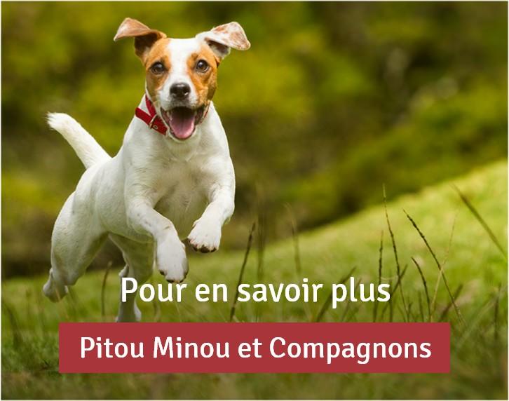 Pour en savoir plus Pitou Minou et Compagnons